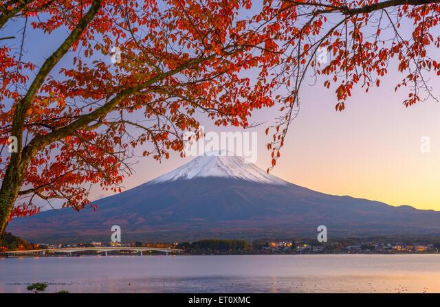 Mt. Fuji, Japan at Lake Kawaguchi during autumn season. - Stock Image