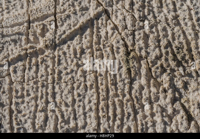 Rough surface of some cement-like building material left on a building site. - Stock Image