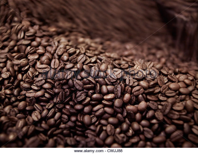 Close up of coffee beans in roasting process - Stock Image