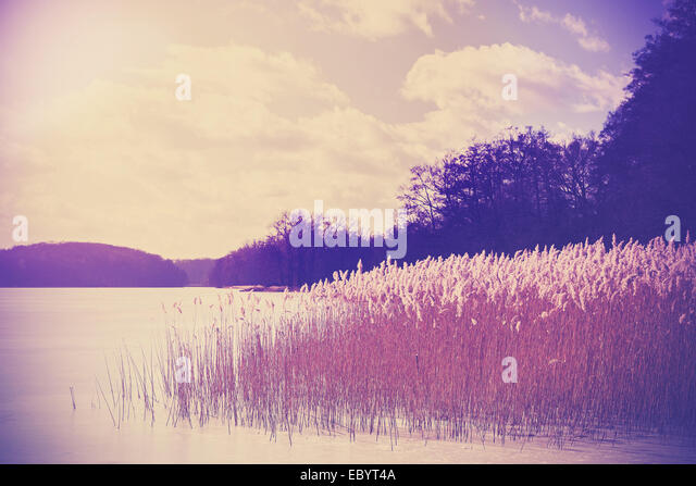 Vintage retro toned image of lake in winter. - Stock Image