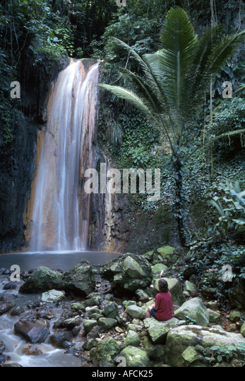 West Indies St. Lucia Soufriere Lower Diamond Waterfall - Stock Image