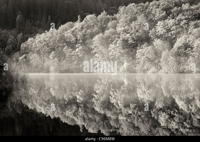 Reflection in Lake Britton with fall colored trees. California - Stock Image