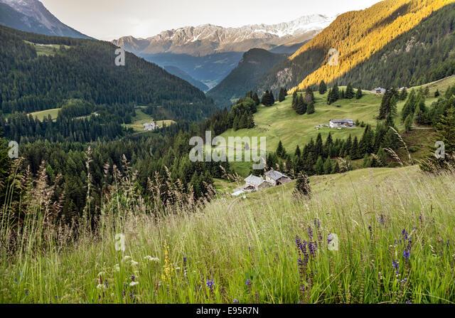 View along the Valposchaivo Valley torward Tirano, Switzerland. | Aussicht auf  das Valposchiavo in Richtung Tirano, - Stock-Bilder
