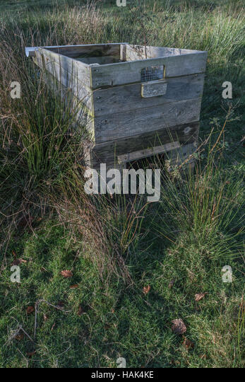 Abandoned hen coop in a field. - Stock Image