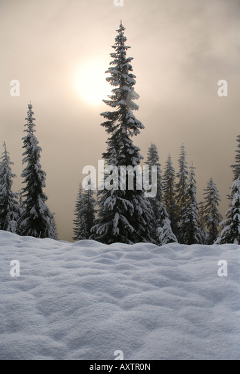Skyline Lake in Washington s Cascade Mountains snowed in during winter - Stock Image