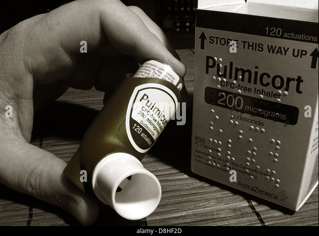 Pulmicort Asthma Inhaler with box with braille markings, held by a user - Stock Image
