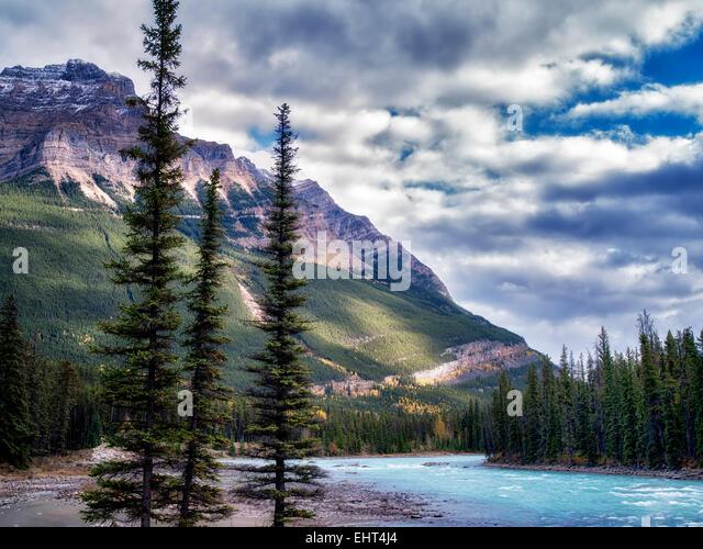 Athebasca River and mountain. Jasper National Park, Alberta, Canada - Stock Image