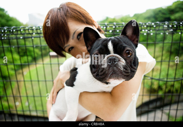 Woman with pet french bulldog - Stock-Bilder