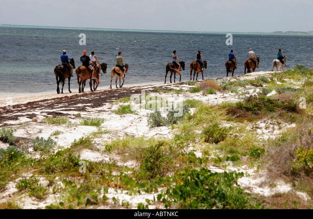 Grand Turk Atlantic Ocean Indigenous Horse Shelter horseback riding beach - Stock Image