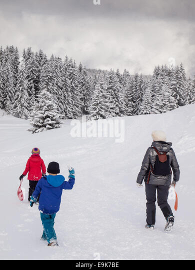 Woman, small boy and small girl walking in a snowy wooded winter  landscape - Stock Image