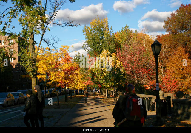People walking alongside Prospect Pak on the sidewalk with Fall foliage in the background. - Stock Image