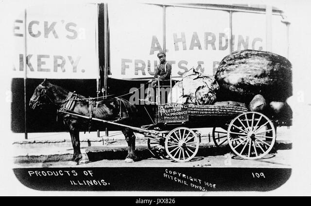 A young African man drives a horse-carried open wagon full of over-sized food labeled 'A Harding Fruits and - Stock Image