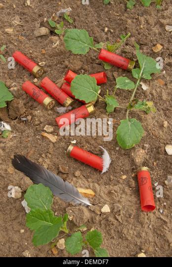 Fired cartridge stock photos fired cartridge stock for 12 gauge shotgun lying on the floor