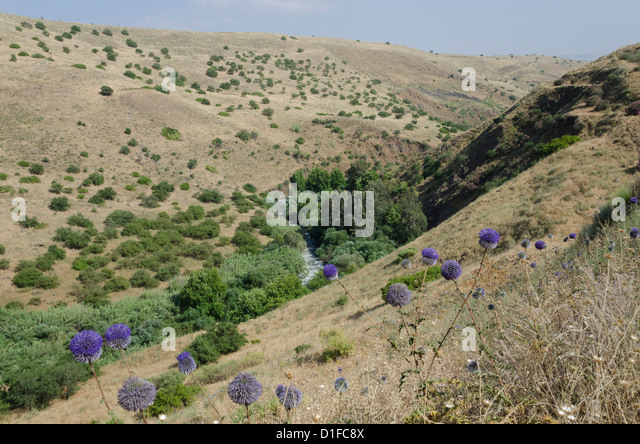 View of River Jordan from the Mountainous Jordan River trail. Upper Galilee, Israel, Middle East - Stock Image