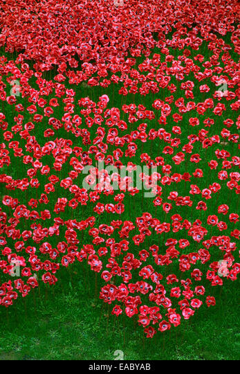 The Ceramic Poppies, Blood Swept Lands and Seas of Red, Tower of London, London, UK. Art work by Paul Cummins and - Stock Image