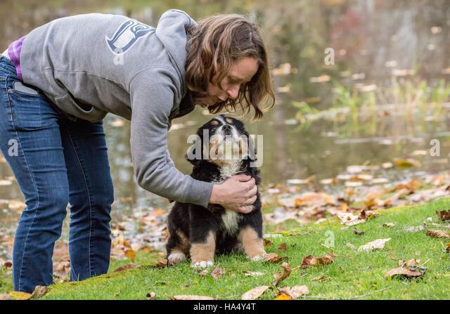 North Bend Dog Training