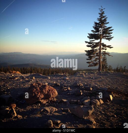 Late afternoon on Mount Shasta - Stock Image