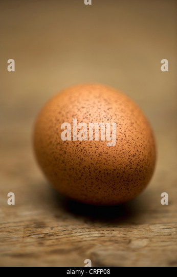 Close up of speckled egg - Stock Image