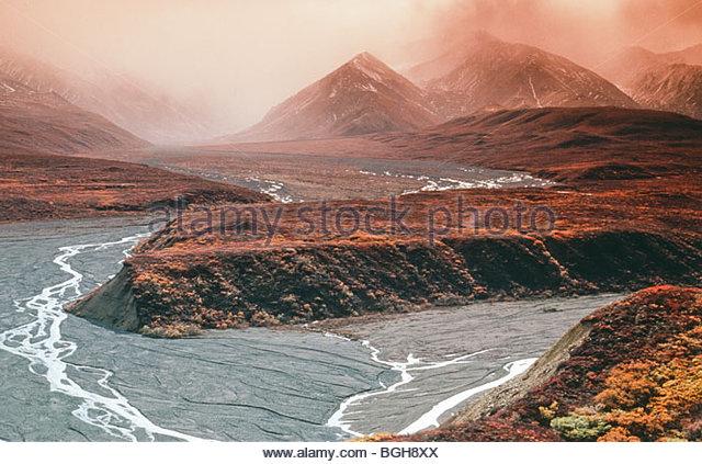 Alaska. Denali NP. Misty Mt Polychrome at Polychrome Pass. - Stock Image