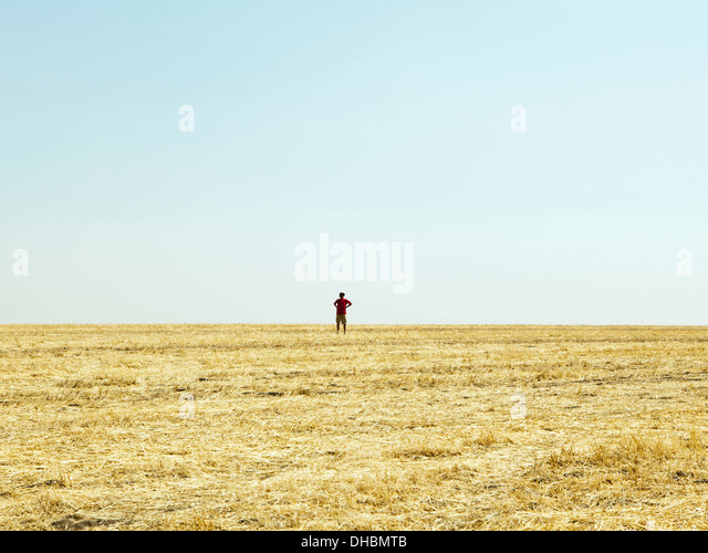 A man standing on the horizon of a field of stubble. - Stock Image