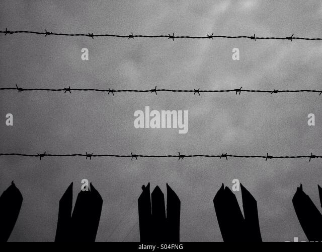 Security fencing - Stock Image