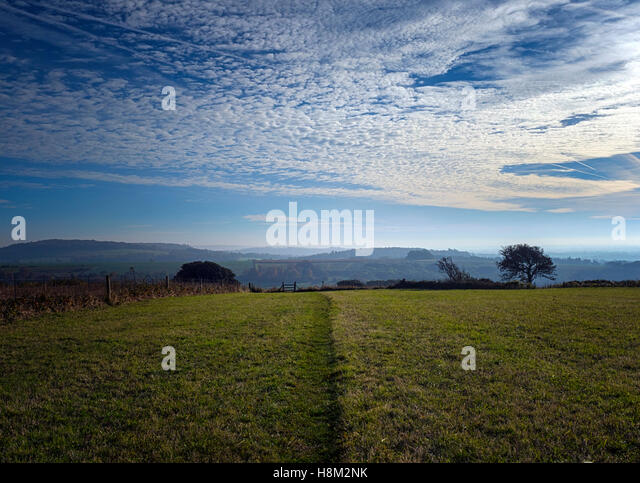 Halnaker Hill, looking north east, on the South Downs near Chichester, West Sussex - Stock Image