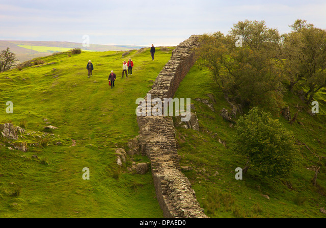 Walking Hadrian S Wall With A Dog