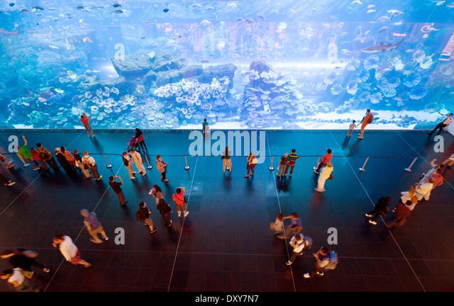 A view from above of people in the Dubai mall looking at the Dubai Aquarium, Dubai, UAE, United Arab Emirates - Stock Image