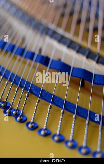 grand piano strings - Stock Image