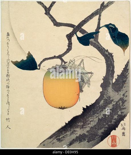 'Moon, Persimmon and Grasshopper', 1807.  Artist: Hokusai - Stock Image