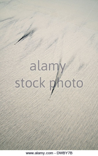 Patterns on the sand by sea - Stock-Bilder