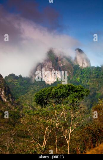Morning clouds around Cerro Trinidad in Altos de Campana national park, Republic of Panama. - Stock-Bilder