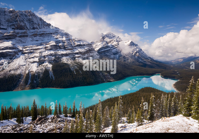 Peyto Lake coloured by glacial silt Banff Jasper National Parks Canada North America - Stock Image