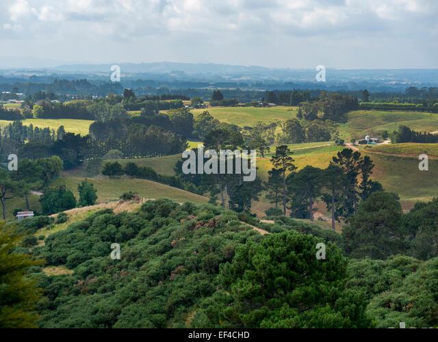 Rolling farmland near Katikati, Bay of Plenty, New Zealand - Stock Image