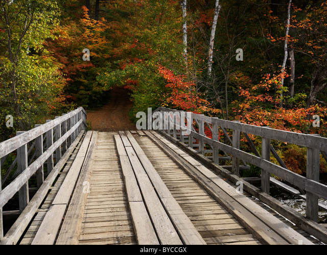 Wooden bridge over a river. Countryside fall nature scenery. Oxtongue river, Algonquin, Muskoka, Ontario, Canada. - Stock-Bilder