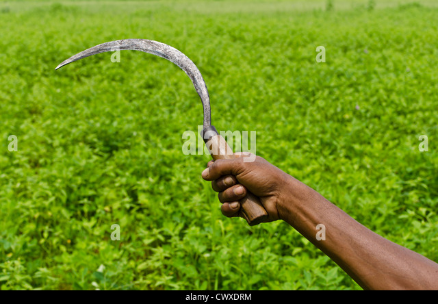 Farming Sickle