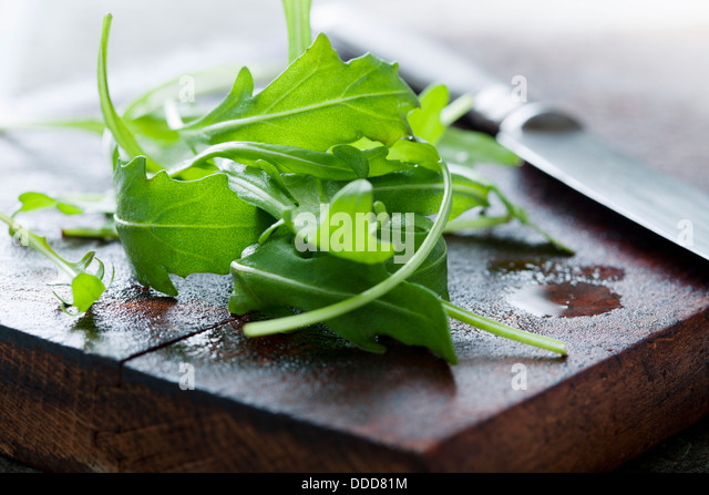 arugula - Stock-Bilder