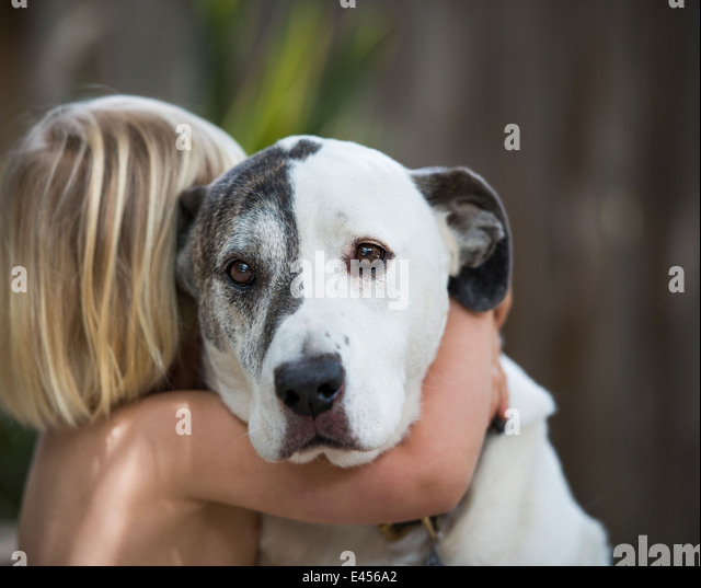Portrait of sad looking dog hugged by three year old boy - Stock Image