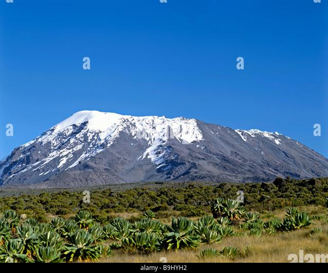 Mount Kilimanjaro, Kilimanjaro National Park, UNESCO World Heritage Site, stratovolcano, Tanzania, East Africa - Stock-Bilder