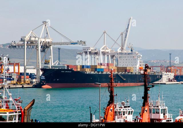 Cargo ship, MSC Uruguay, being unloaded in the port of Koper, Slovenia, Europe, Koper, Slovenian Littoral, Slovenia - Stock Image
