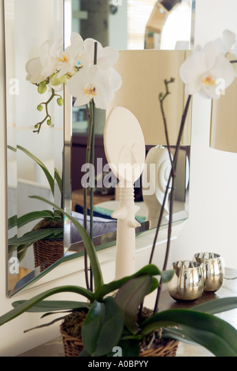 orchid plant on sideboard in front of mirror - Stock Image