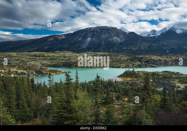 alpine meadows around Fraser, South Klondike Highway, British Columbia, Canada - Stock Image