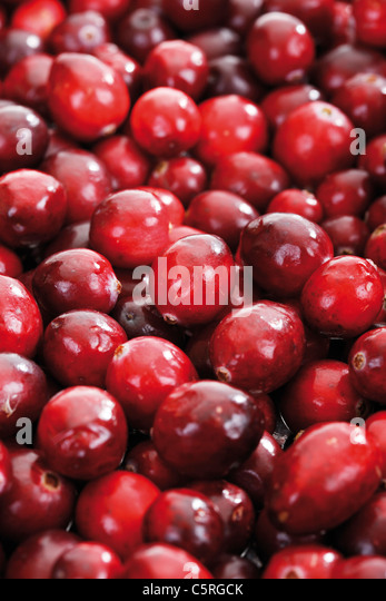 Cranberries (Vaccinium macrocarpon), full frame - Stock Image