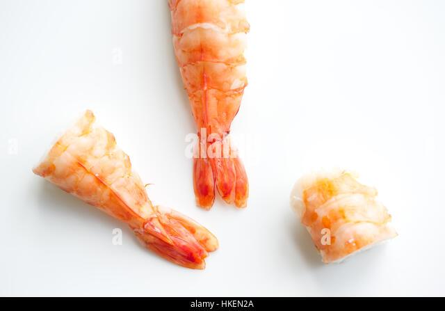 sushi, shrimp, food, seafood, shrimp, ebi nigiri - Stock Image