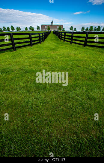 Bright Green Grass of Horse Farm with fence leading to barn - Stock Image
