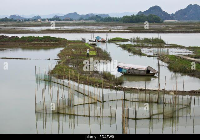 Binh stock photos binh stock images alamy for Georgia fish farms