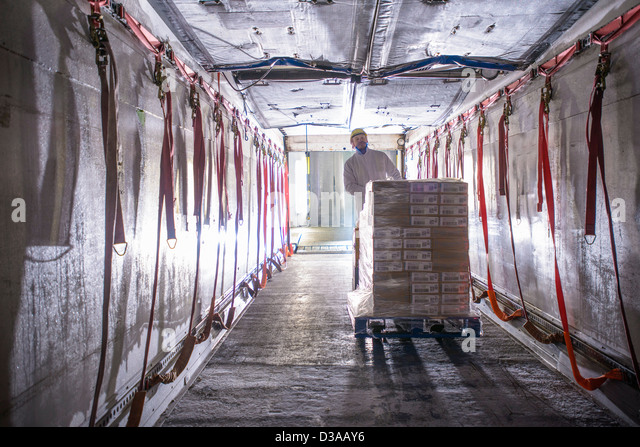 Worker loading products into freezer truck of food factory - Stock Image