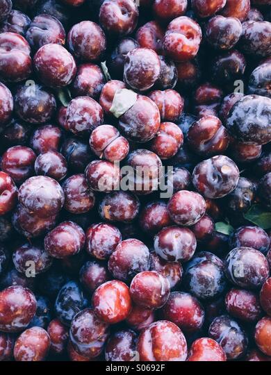 Farm fresh sweet black plums - Stock Image