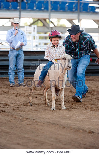 A 4-year-old boy rides a sheep as his dad gives it a nudge while mutton busting at the rodeo. - Stock Image