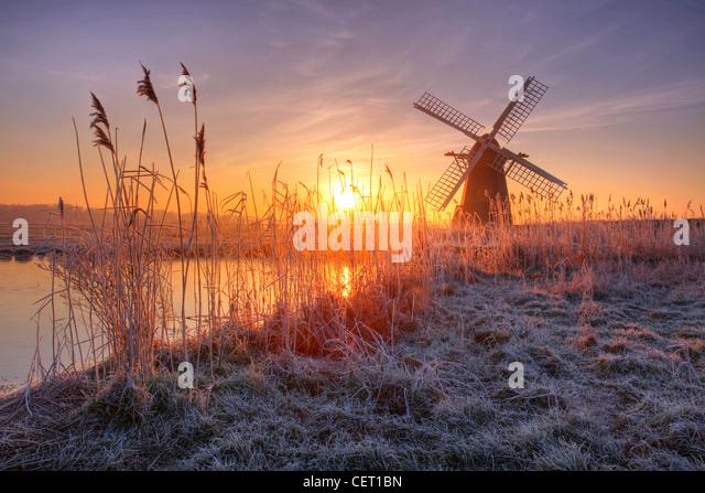 A misty sunrise over hoar frosted reeds and Herringfleet Windmill in Suffolk. - Stock-Bilder